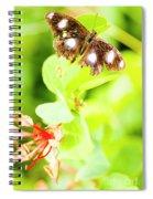 Jungle Bug Spiral Notebook