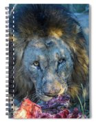 Jungle King With Kill With Killer Looks Spiral Notebook