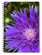 Just A Stroll Spiral Notebook