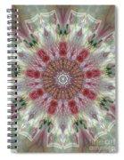 Kaleidoscope Valentine  Spiral Notebook