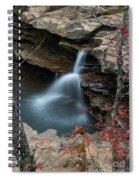 Kings River Falls Spiral Notebook