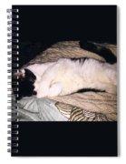 Kitty Kitty Spiral Notebook