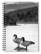 Lake Cuyamaca Geese Spiral Notebook