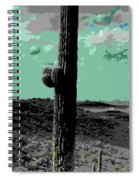 Lake Pleasant Az 044a Spiral Notebook