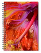 Laughing Hibiscus Spiral Notebook