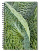 Laughing Leaves Spiral Notebook