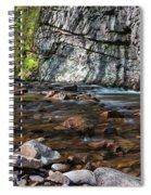 Laurel Fork In Spring I Spiral Notebook