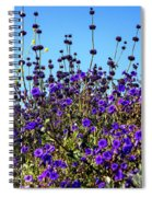 Lavender Blooms  Spiral Notebook