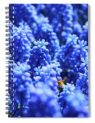 Lavender Field With Bee Spiral Notebook