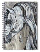 Lazy Stallion Spiral Notebook