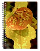 Leaf Patterns Spiral Notebook