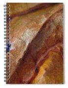 Leaf Series 1 Spiral Notebook