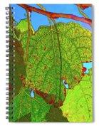 Leafs 3 Spiral Notebook