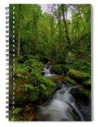 Lee Falls Cascades Spiral Notebook