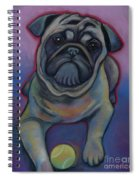 Lets Play Pug  Spiral Notebook