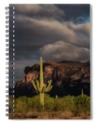 Light Play On The Superstitions  Spiral Notebook