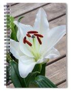 Lily Casa Blanca 1 Spiral Notebook