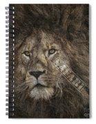 Lion Safari Spiral Notebook