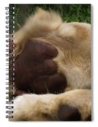 Lion's Feet Spiral Notebook