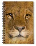 Lions No 02 Spiral Notebook