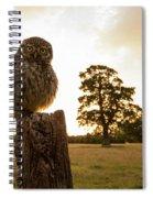 Little Owl Sunset Spiral Notebook