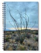 Lone Bush - Sunrise Spiral Notebook