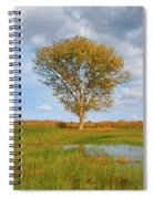Lone Tree By A Wetland Spiral Notebook