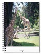Long Necks Spiral Notebook