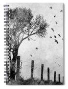 Looks Like Rain I Spiral Notebook