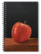 Lopsided Apple Spiral Notebook