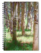 Lost In The Woods - Kenosha Pass, Colorado Spiral Notebook