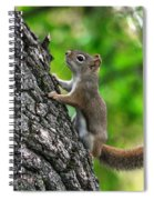 Lost Nuts Spiral Notebook