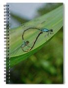 Love On A Leaf Spiral Notebook