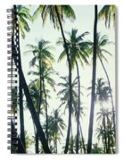 Low Angle View Of Coconut Palm Trees Spiral Notebook