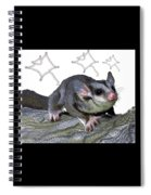 M Is For Mahogany Glider Spiral Notebook