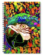 Macaw High I Spiral Notebook