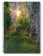 Magnolia Tree Sunset Spiral Notebook