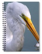 Make It A Double  Spiral Notebook