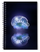 Man O' War Spiral Notebook