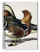 Mandarin Duck  Aix Galericulata Illustrated By Charles Dessalines D' Orbigny  1806-1876 1 Spiral Notebook