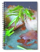 Mango And Two Onions Spiral Notebook