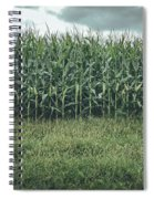 Maze Field Spiral Notebook