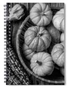 Mimi Pumpkins In Wicker Bowl Black And White Spiral Notebook