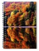 Mirrored Gallery Spiral Notebook