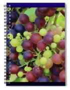 Mixed Grape Bunches 4 Spiral Notebook