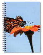 Monarch 2018-27 Spiral Notebook