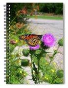 Monarch Butterfly Danaus Plexippus On A Thistle Spiral Notebook