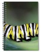 Monarch Caterpillar Macro Spiral Notebook