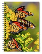 Monarch Gathering 2 Spiral Notebook