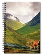 Monarch Of The Glen Spiral Notebook